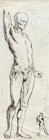 Dibujo a tinta. Título: El Écorché de Houdon. Autor: Posiblemente J. Albareda | eBay</title><meta name=